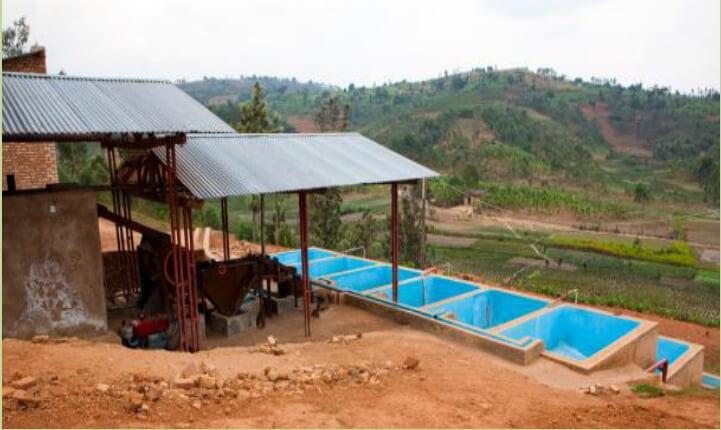 Station de lavage - ferme de Mpanga